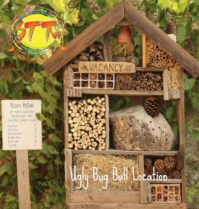 Ways to create a wildlife sanctuary in your garden